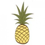 southern_hospitality_pinapple